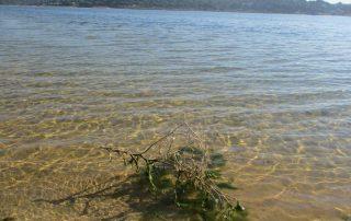 caminhada lagoa albufeira costa da caparica caminhando-15
