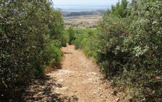 caminhada monte serves vialonga caminhando-6