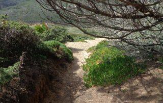 caminhada praia ursa serra sintra adraga caminhando-20