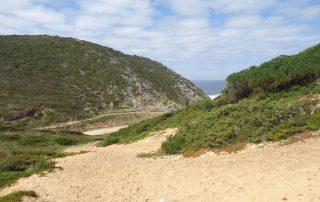 caminhada praia ursa serra sintra adraga caminhando-5