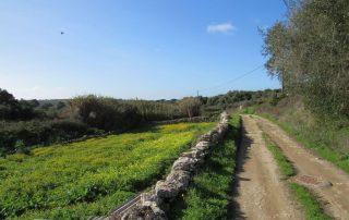 caminhada rota aldeias sintra caminhando-16