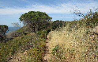 caminhando costa do guincho abano serra sintra cascais caminhando 17