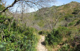 caminhando costa do guincho abano serra sintra cascais caminhando 7