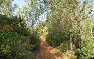 caminhada arrabida terras do risco setubal caminhando-10