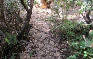 caminhada arrabida terras do risco setubal caminhando-9