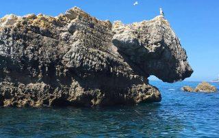 passeio barco cabo espichel grutas arrabibda sesimbra caminhando-1