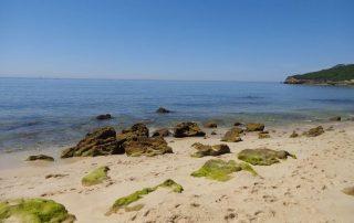 passeio barco praias arrabida setubal sesimbra caminhando-7