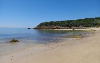 passeio barco praias arrabida setubal sesimbra caminhando-9