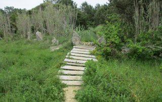 caminhada azenhas magoito serra de sintra caminhando-17