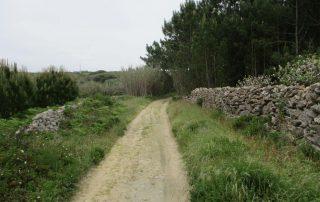 caminhada azenhas magoito serra de sintra caminhando-8
