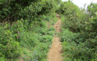 caminhada sobral abelheira mafra caminhando-16
