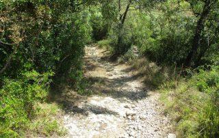 caminhada cascata fervenca anços caminhando-1