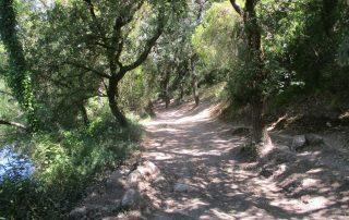 caminhada cascata fervenca anços caminhando-11