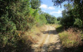 caminhada cascata fervenca anços caminhando-6