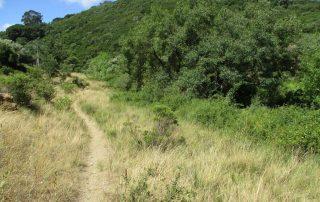 caminhada cascata fervenca anços caminhando-8