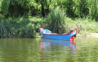 sao martinho castanhas passeio de barco escaroupim caminhando 7
