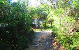 caminhadas cresmina guincho serra de sintra caminhando-3