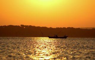 passeio de barco gambia estuario do sado caminhando-12