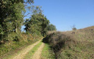 caminhadas milharado mafra caminhando-7