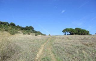 caminhada-arrabida-palmela-serra-caminhando-7
