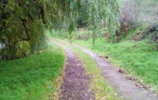 caminhadas nisa belver alpalhao caminhando-22