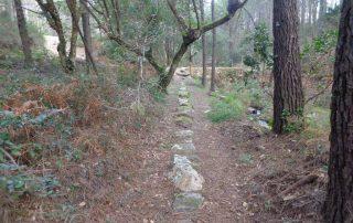caminhada lagos monserrate rodel serra de sintra caminhando 11