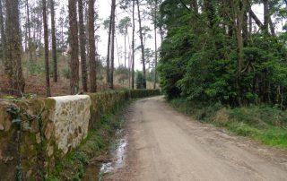 caminhada lagos monserrate rodel serra de sintra caminhando 1