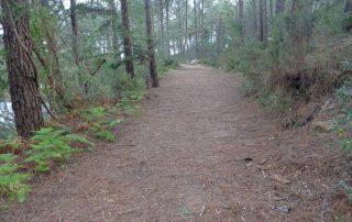 caminhada lagos monserrate rodel serra de sintra caminhando 2