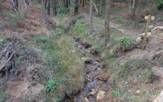 caminhada lagos monserrate rodel serra de sintra caminhando 7