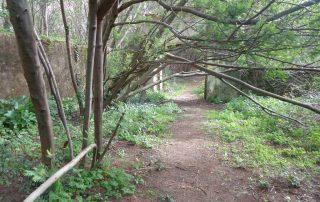 caminhada lagos monserrate rodel serra de sintra caminhando 8