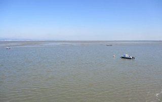 passeio-de-barco-estuario-do-tejo-alcochete3