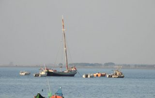 passeio-de-barco-estuario-do-tejo-alcochete1