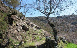 caminhadas-vale-de-cambra-natureza2