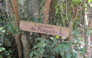 passadicos maceira vimeiro porto novo caminhando-12