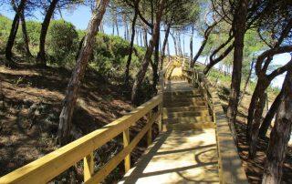 passadicos maceira vimeiro porto novo caminhando-26
