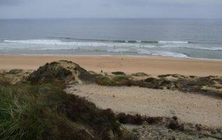 caminhadas praia santa cruz azul caminhando-11