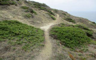 caminhadas praia santa cruz azul caminhando-24
