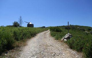 caminhadas minas da bezerra porto de mos caminhando 12
