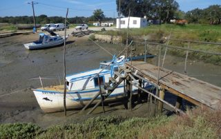 caminhada herdade da gambia estuario do sado caminhando-4