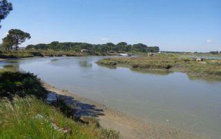 Vista caminhada estuario do sado gambia caminhando-3