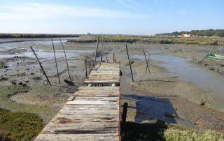 caminhada herdade da gambia estuario do sado caminhando-6