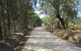 caminhada_canha_montijo_caminhando1