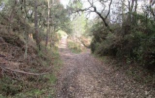 caminhada covas de ferro loures caminhando-1