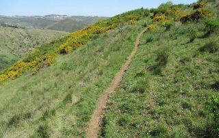 caminhada-covas-de-ferro-loures-caminhando-10