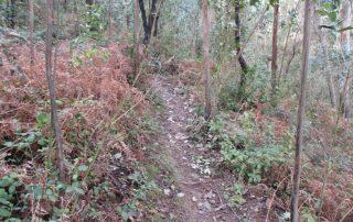 caminhada-covas-de-ferro-loures-caminhando-11
