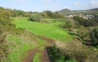 caminhada-covas-de-ferro-loures-caminhando-18