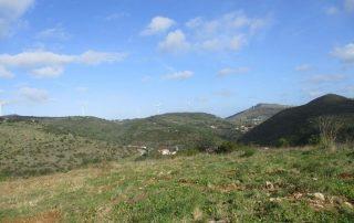 caminhada-covas-de-ferro-loures-caminhando-19