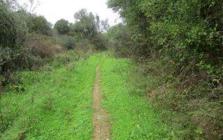 caminhada ancos lapias caminhando-8