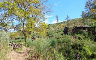 alvao cascatas vila real fisgas ermelo- ibeira pena caminhando-39