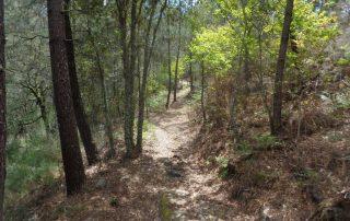 alvao-cascatas-vila-real-fisgas-ermelo-ribeira-pena-caminhando-17